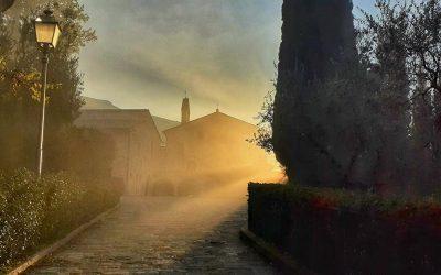 Reza en el Santuario de San Damián en Asís